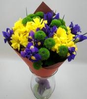 Улыбка солнца Состав:  хризантема зеленая- 3 шт хризантема желтая- 2 шт ирис синий- 9 шт Оформление: бумага