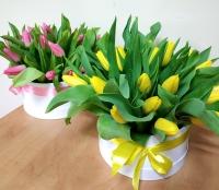 Коробочка с тюльпанами